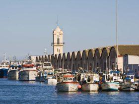 El Puerto de Gandia no para de crecer ni de hacernos crecer
